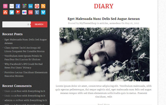 theme_wordpress_diary