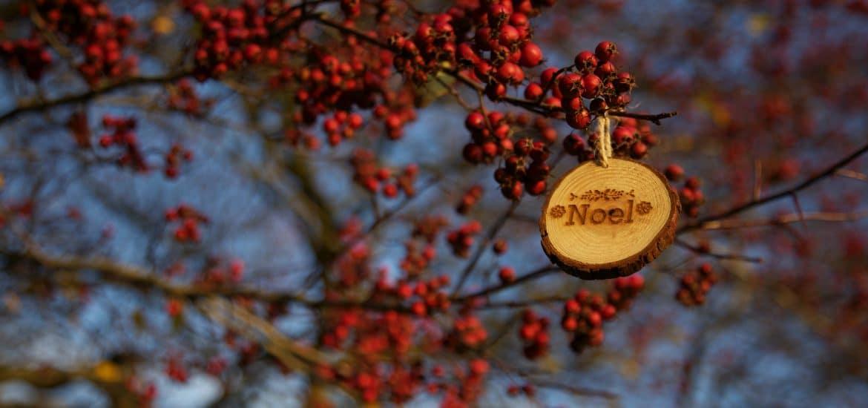 5 idées de cadeaux d'entreprise 2.0 pour Noël